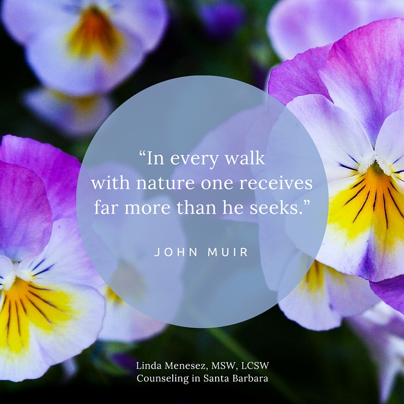 Nature Helps to Heal Our Wounded Hearts
